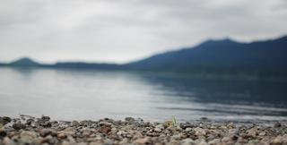 lake-quinault